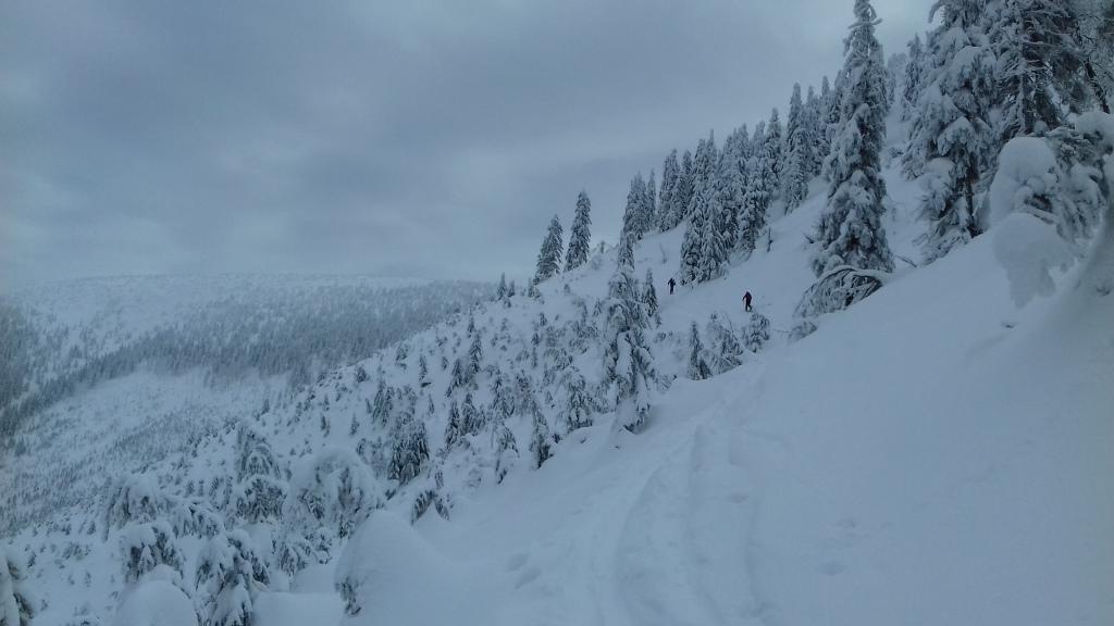1.2.2019 Přes Borůvkův žlab na Výrovku a Brusinkovým žlabem do Špindlu
