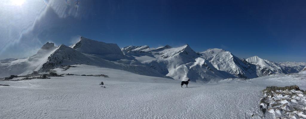 12 panorama ze  sedla za psem je Sonnblick
